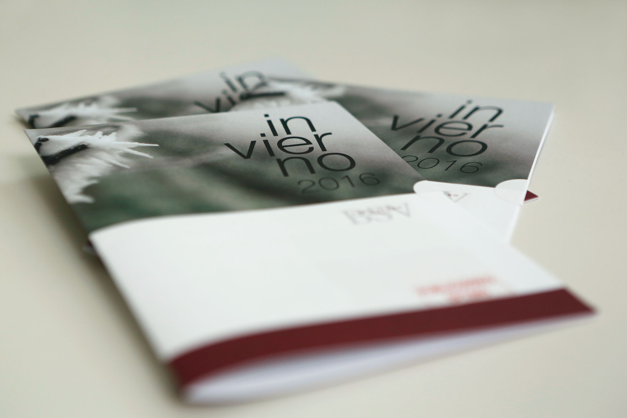 Bodegas San Valero brochures.