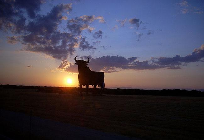 """The bull at sunset"" por Cruccone licenciado bajo CC BY 2.0"