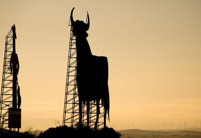 """""""El toro y el Tio Pepe al amanecer"""" por shaorang licenciado bajo CC BY 2.0"""