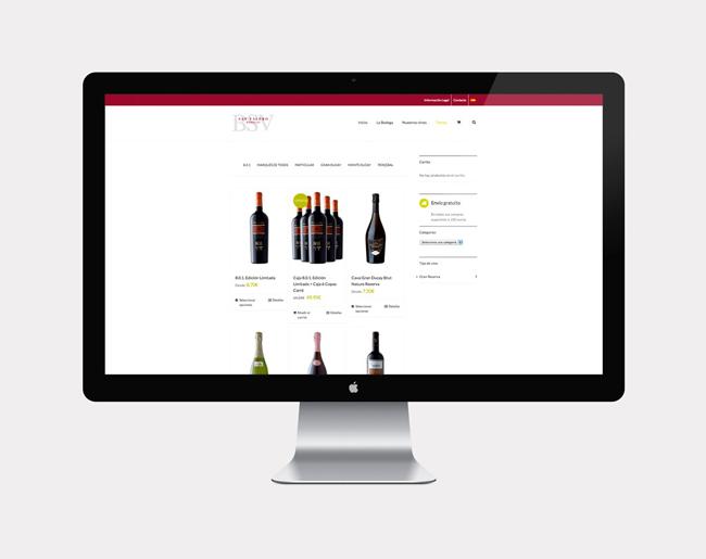 Diseño web BSV