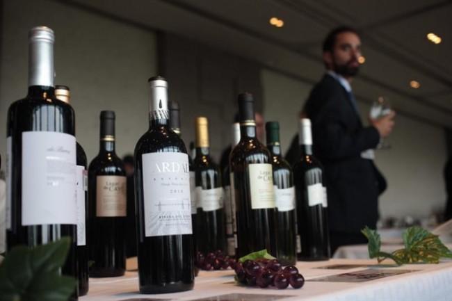 X exposición de vinos